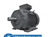 motor chan de elektrim